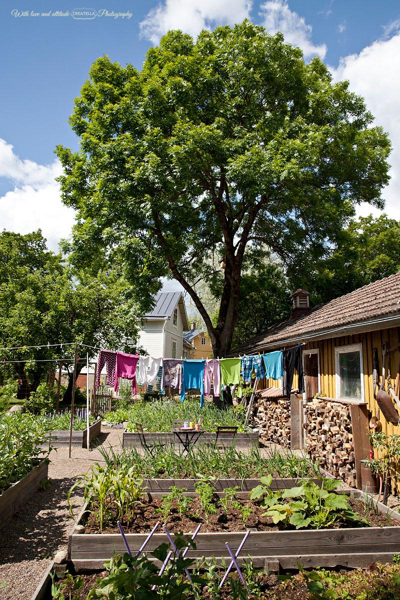 41-Trädgård