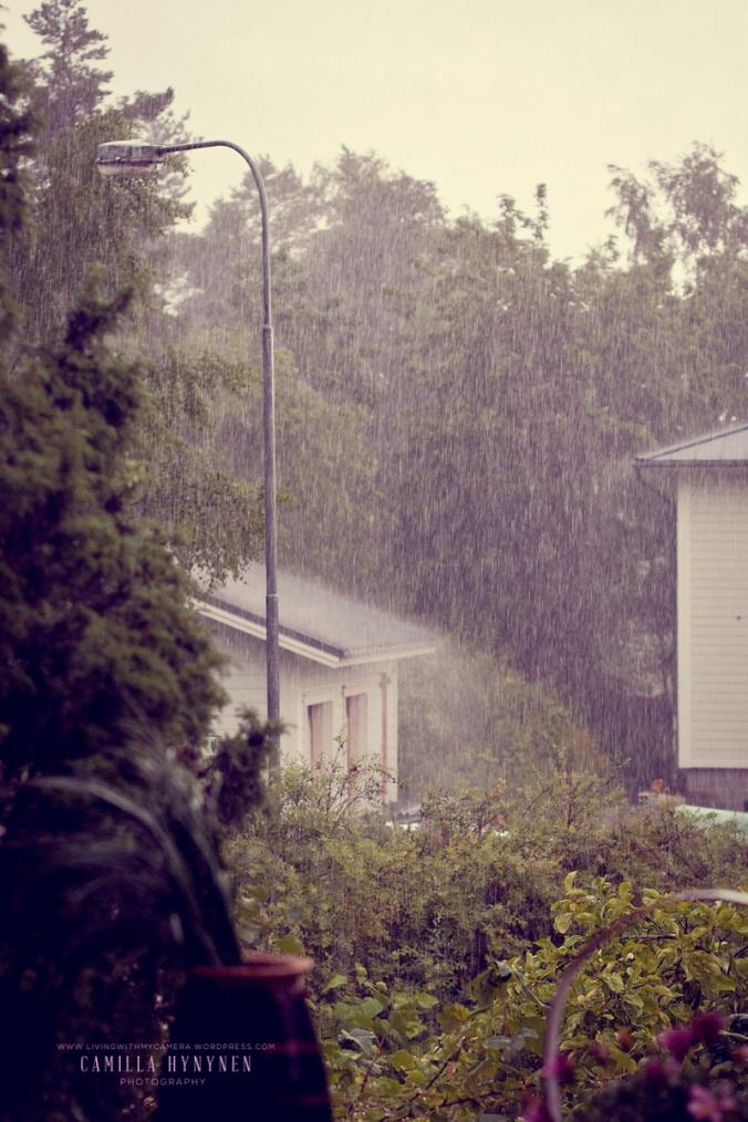 regn-blogg