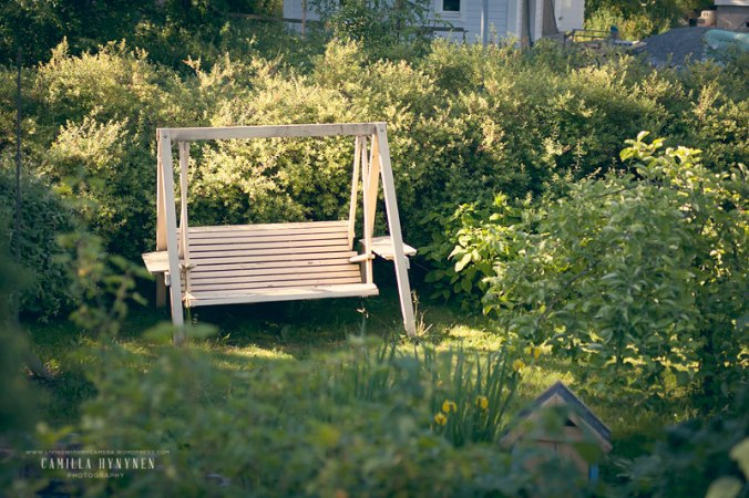Trädgårdsgunga-004