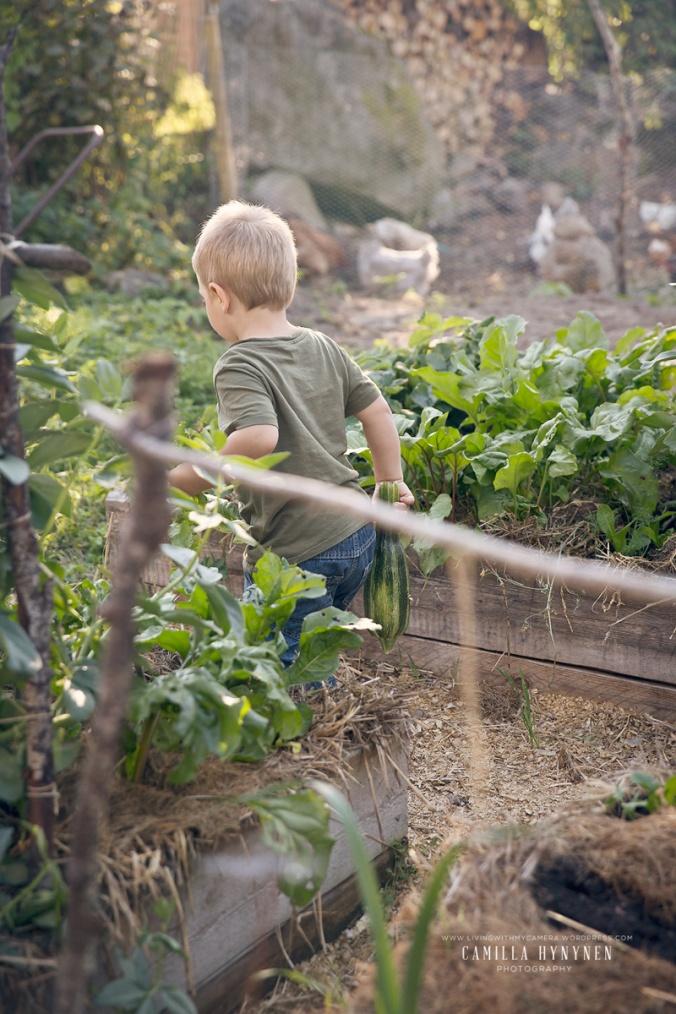 Sandras-trädgård-del-I-504