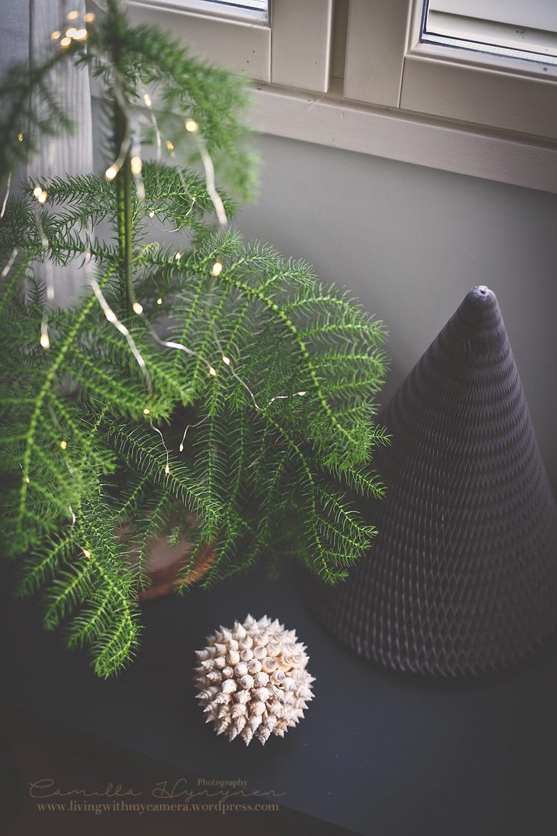Julkalendersbilder-002