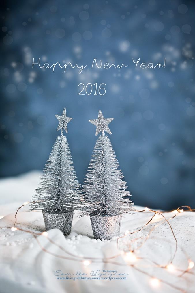 gott-nytt-år-blogg