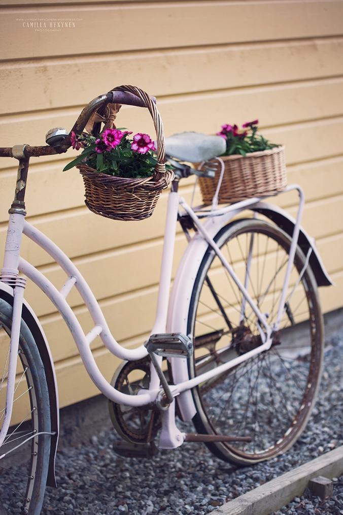 cykel-2