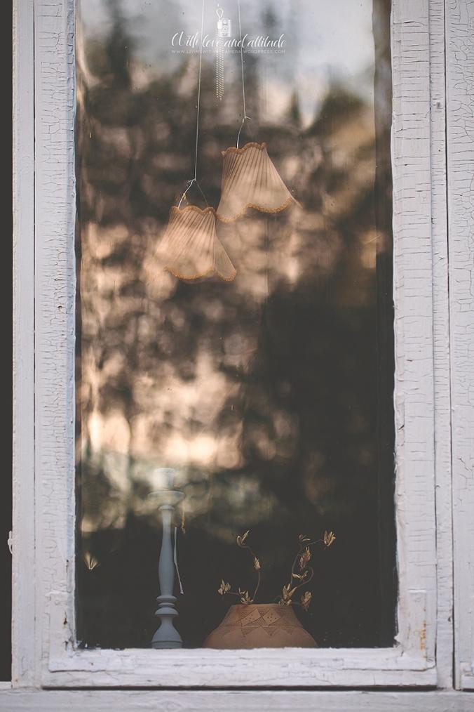 fönster-1