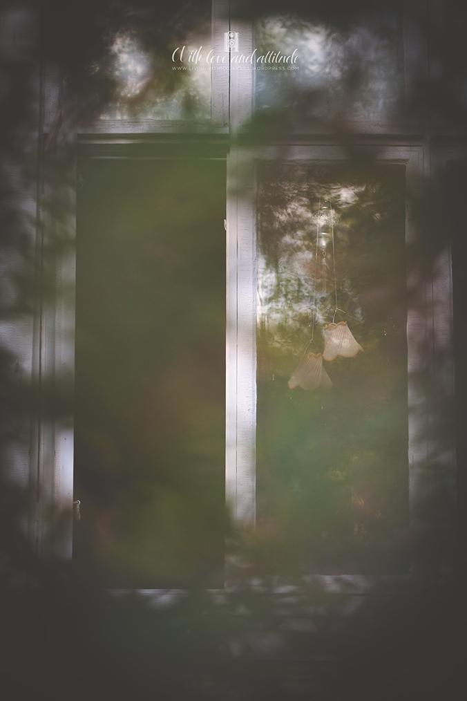 Fönster-7