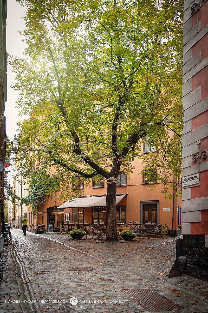 stockholm-009