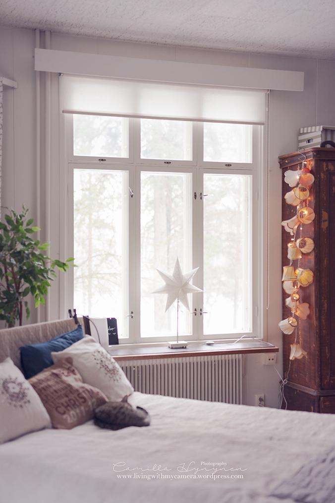 julstjarnor-fonster-021