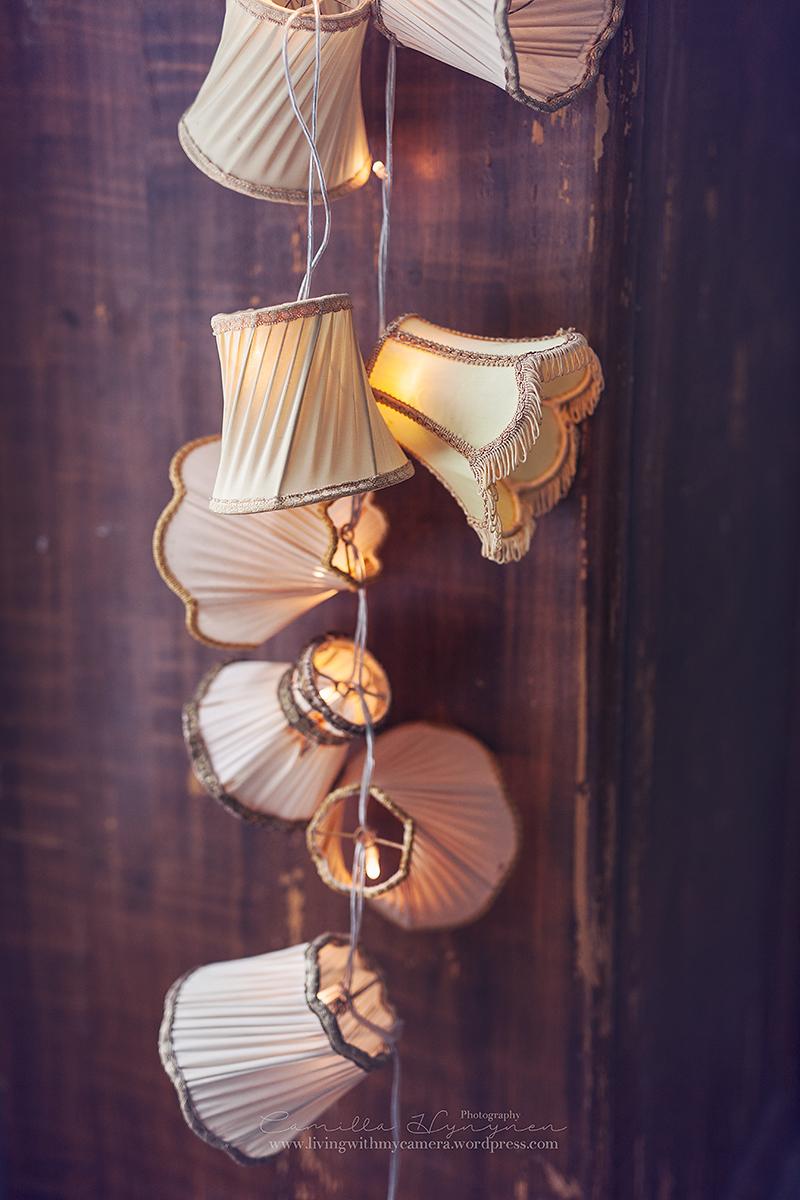 julstjarnor-fonster-022