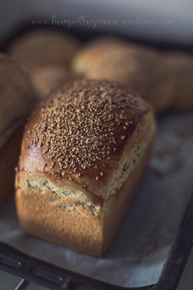 bröd-o-burgare-014