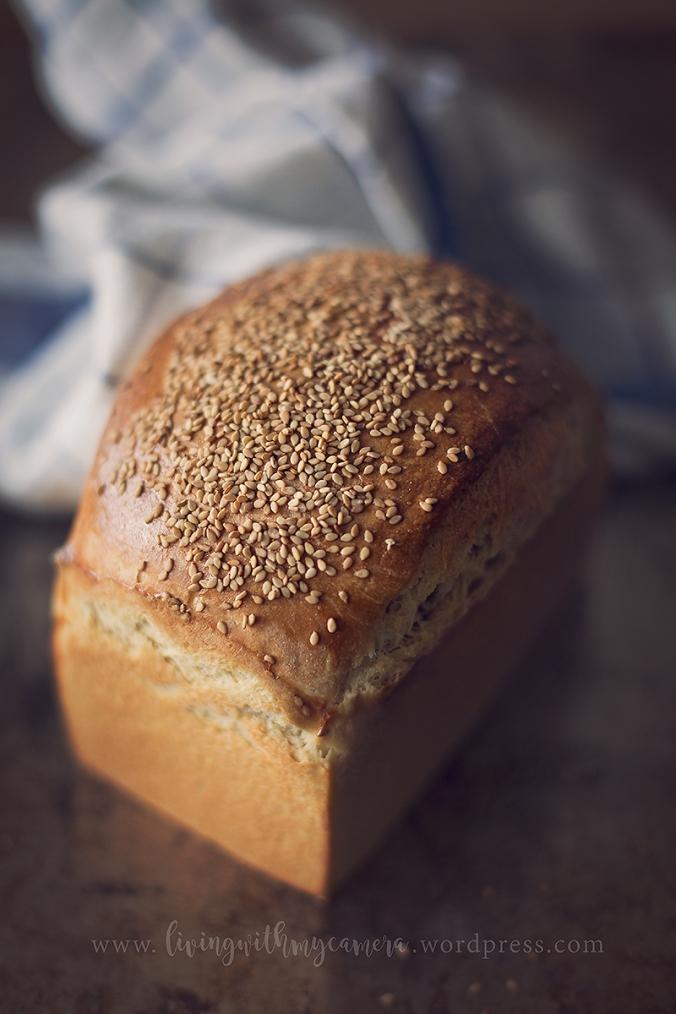 bröd-o-burgare-020