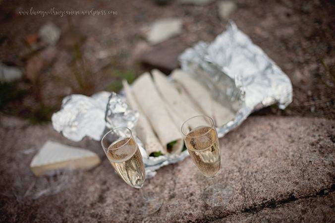 piknik-och-syren-064