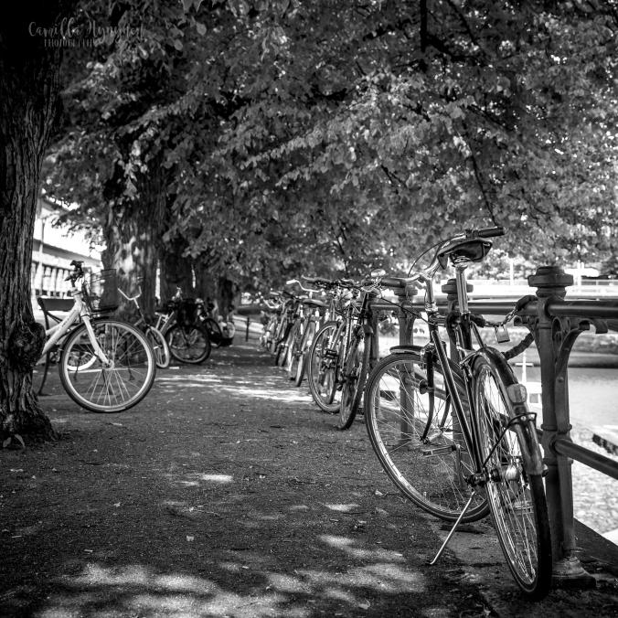 cykel-kvadrat.FBjpg