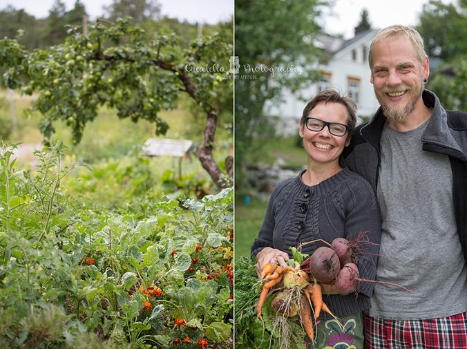 puutarha-parainen-kollasi