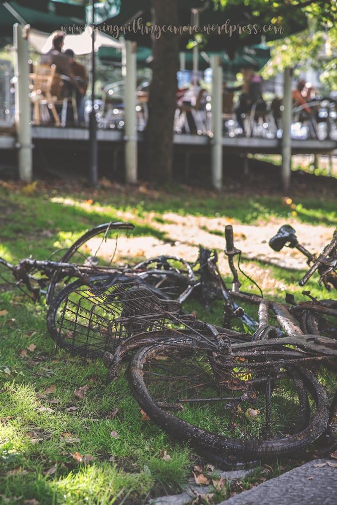 Åbo-dagen-090blogg