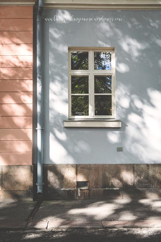 Åbo-dagen-117