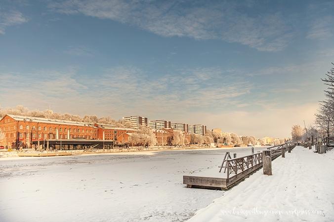 Vinterpics-050