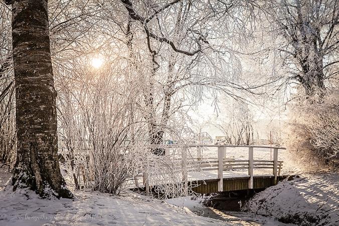 Vinterpics-109