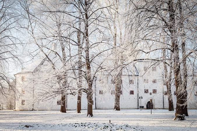 Vinterpics-117