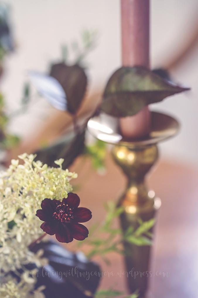 trädgård-blogg-1